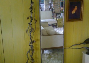 Decorative Mirror with Vine